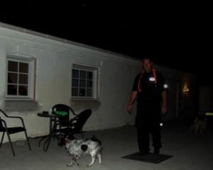 hundevagt og narkohund